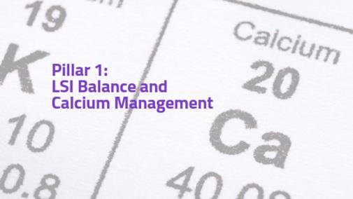 LSI Balance and Calcium Management (Pillar 1)