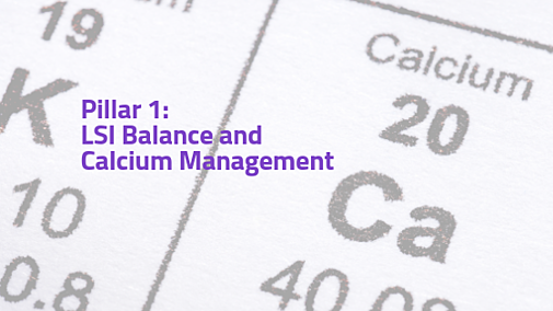 LSI Balance and Calcium Management (Pillar 1)