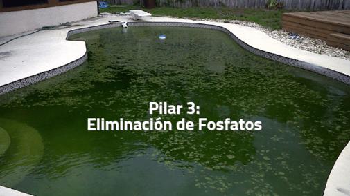 Eliminación de Fosfatos (Pilar 3)