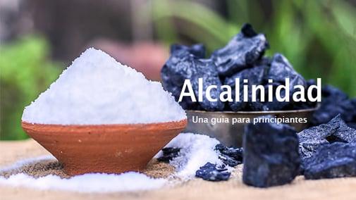 Que es la Alcalinidad?