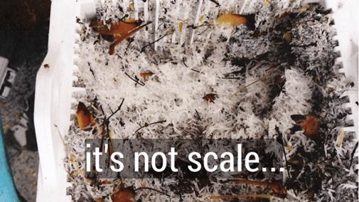 Calcium Scale ≠ Underwater Calcium Crystals
