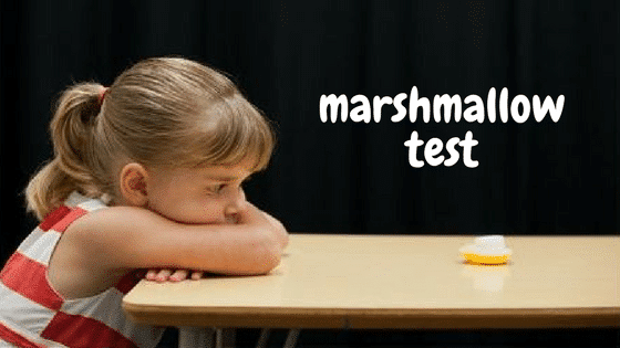 Delayed Gratification: The Marshmallow Test