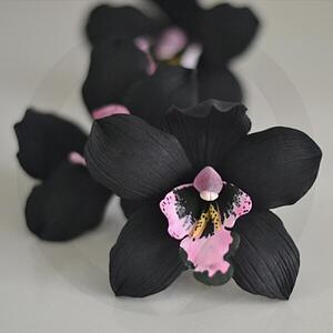 gingerblackorchid