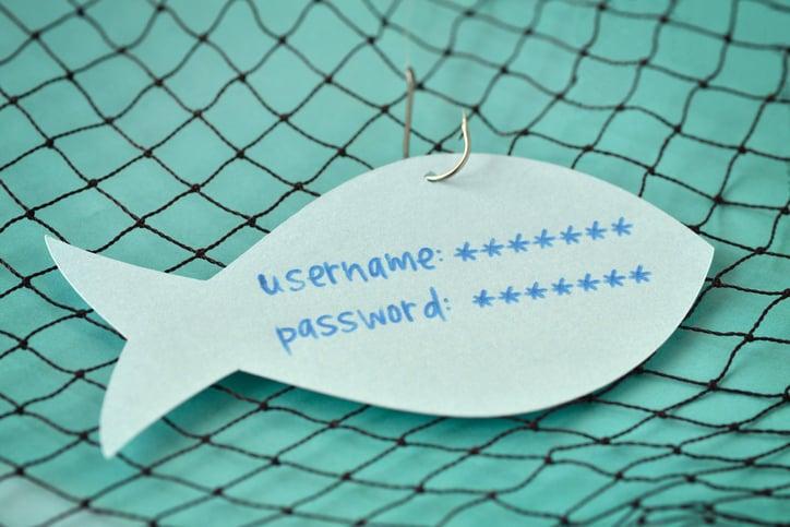 paypal phishing