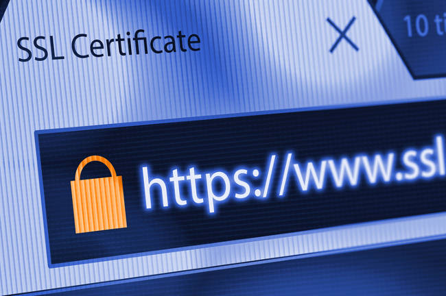 What is an SSL Certificate, and does my Business Need one?