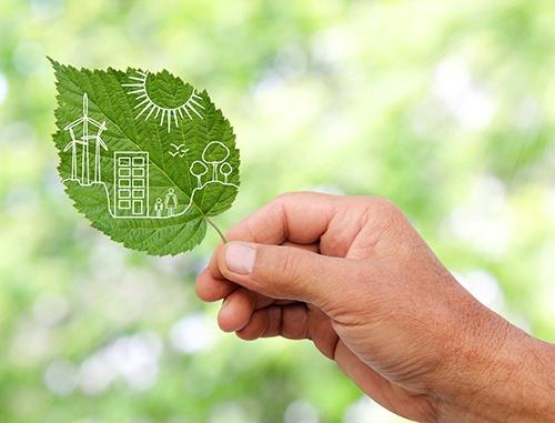 green leaf sustainability-blog.jpg