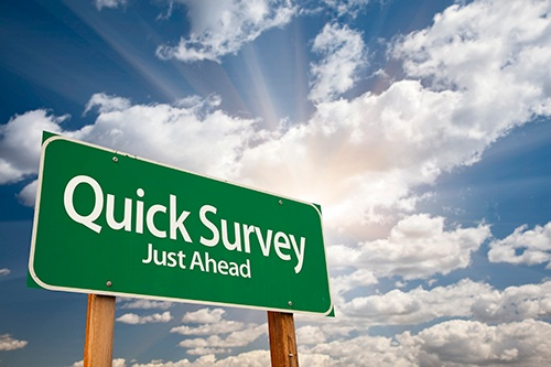 Survey — Health and Safety Critical Issues