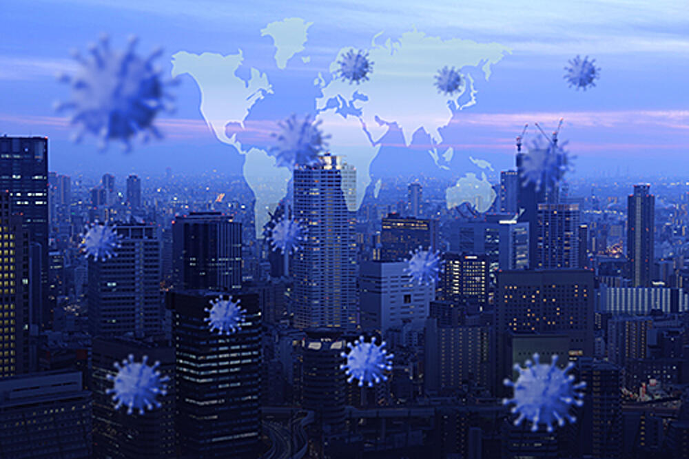 The Pursuit of Corporate Sustainability: Experiences from the Pandemic