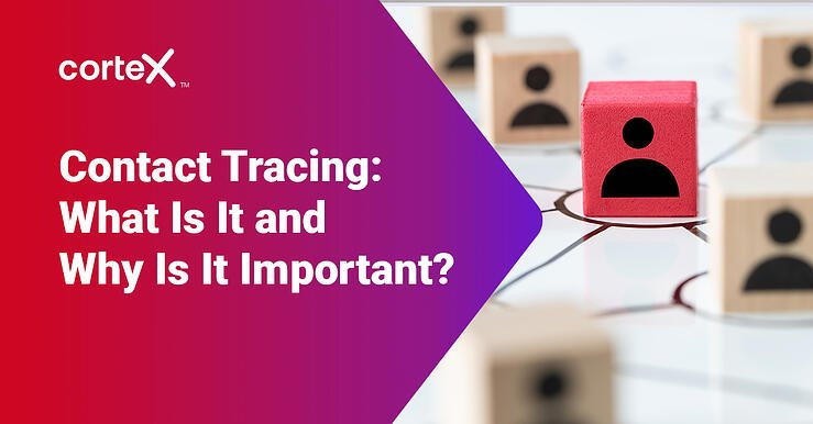 Contact Tracing: What Is It and Why Is It Important?
