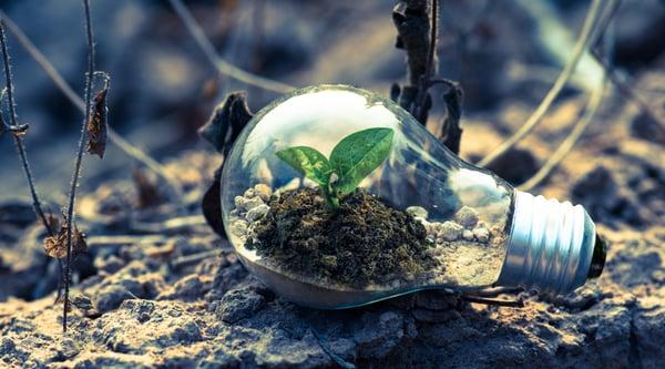 Tarkett Blog - Duurzaamheid co2 uitstoot header-1