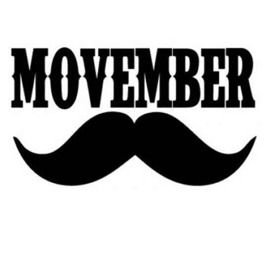 Movember-1-550x550