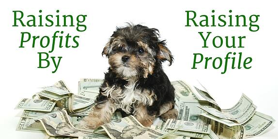 How to Raise Your Profits by Raising Your Profile