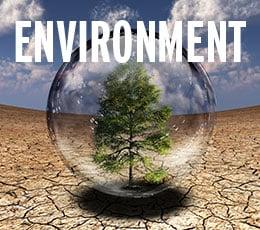 environment weekly