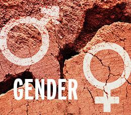 gender weekly