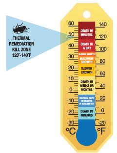 Using Heat To Kill Pests
