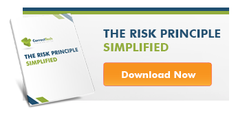 Download The Risk Principle Simplified