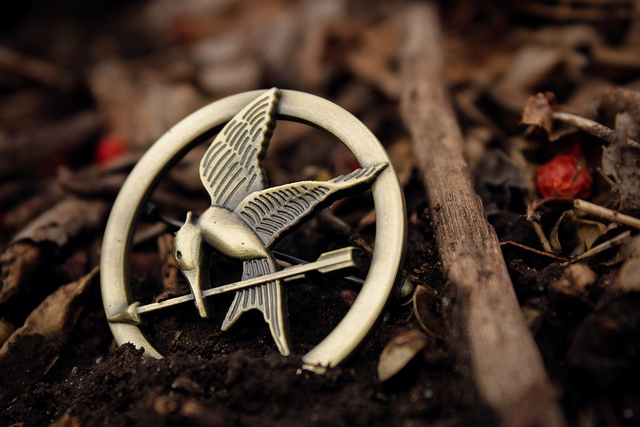 The Hunger Games Guide To Getting More Landscape Architecture RFP