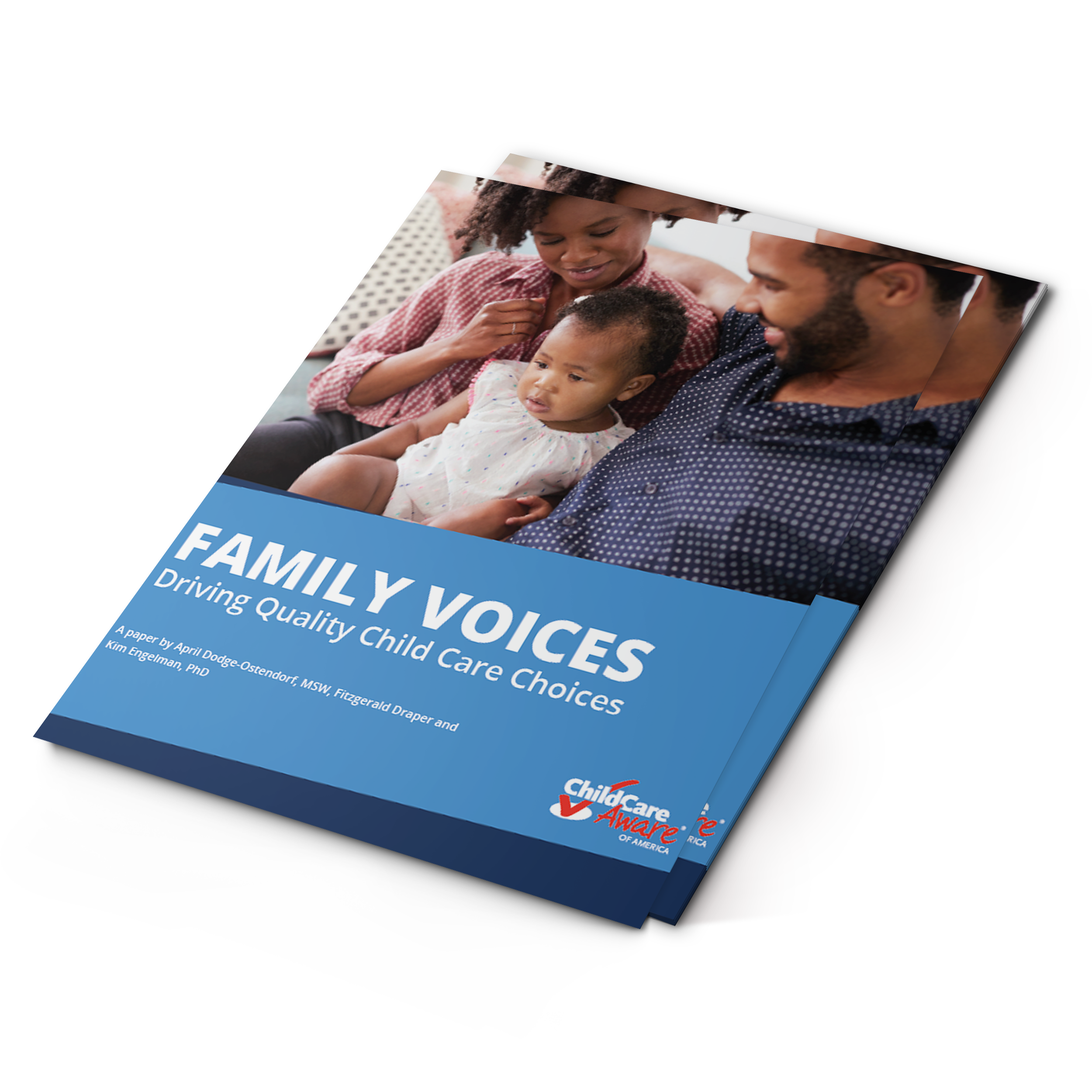 family voices white paper final