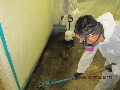 Mold Abatement Bay Area