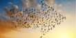 The go-to Azure migration options for SQL Server end of life