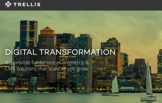 Sales Layer Trellis
