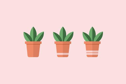 three plant pots illustration