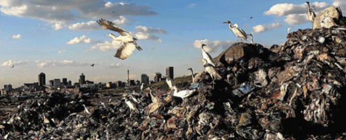 Reuse, reduce, recycle, renew: The journey to zero waste to landfill Part 1