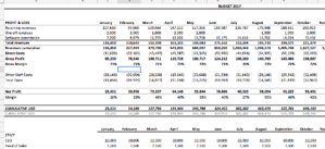 Agency Financials Full Planning Template
