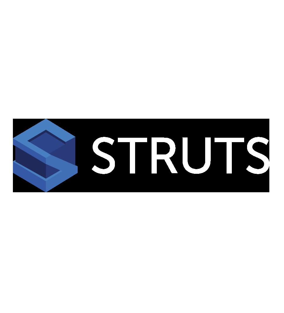 org.apache.struts:struts2-core