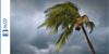 What Are the Benefits of Hurricane Impact Doors?