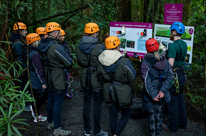 Canopy Tours conservation learning