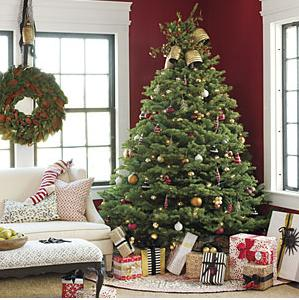 Christmas Tree Living Room feng shui placement of your christmas tree
