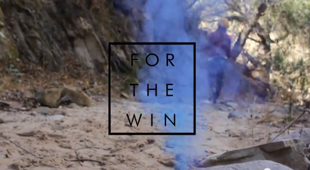 for_the_win