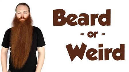 BeardOrWeird_web