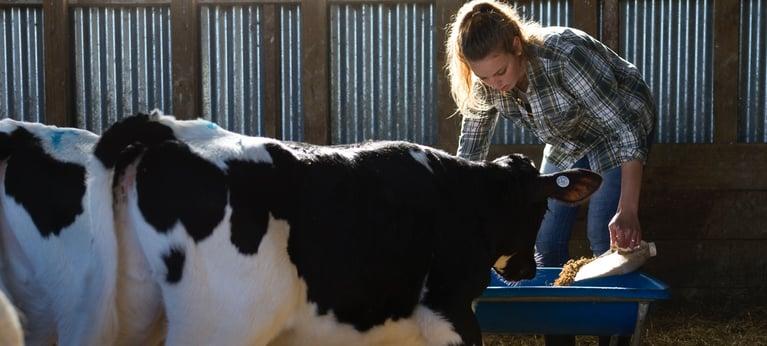 FarmIQ shines torch on farms' performance