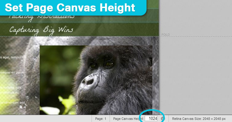 Page-Canvas-Height