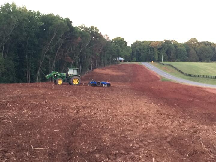 The Process of Land Clearing: What to Expect