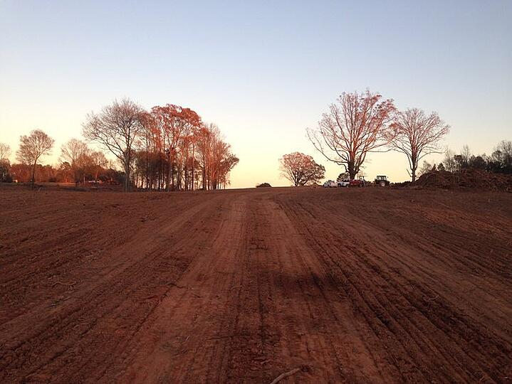 The Top 4 Benefits of Land Clearing for Your Property