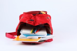 Property Solutions Backpack by APPRO and CERRON
