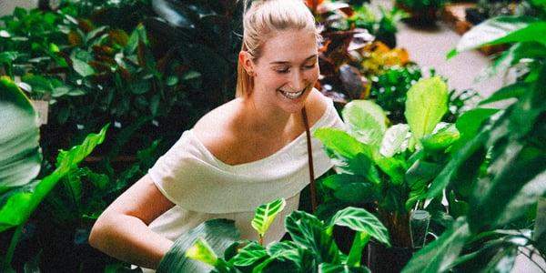 Jacinta Green Room - Image 1