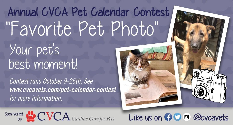 2019 CVCA Calendar Ad