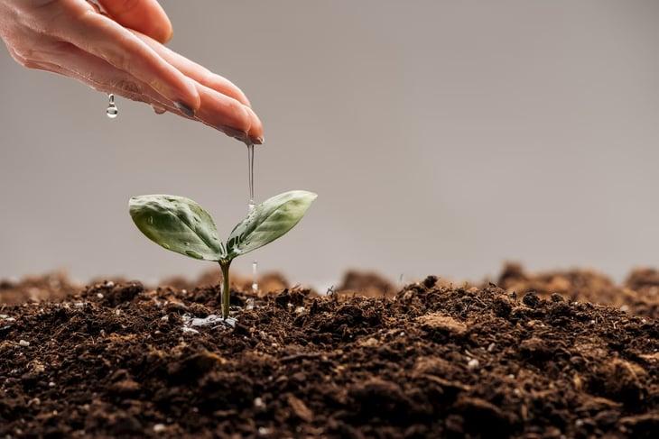 Sviluppo aziendale in una PMI come renderlo efficace e sostenibile nel tempo