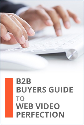 B2B Buyers Guide to Web Video Perfection