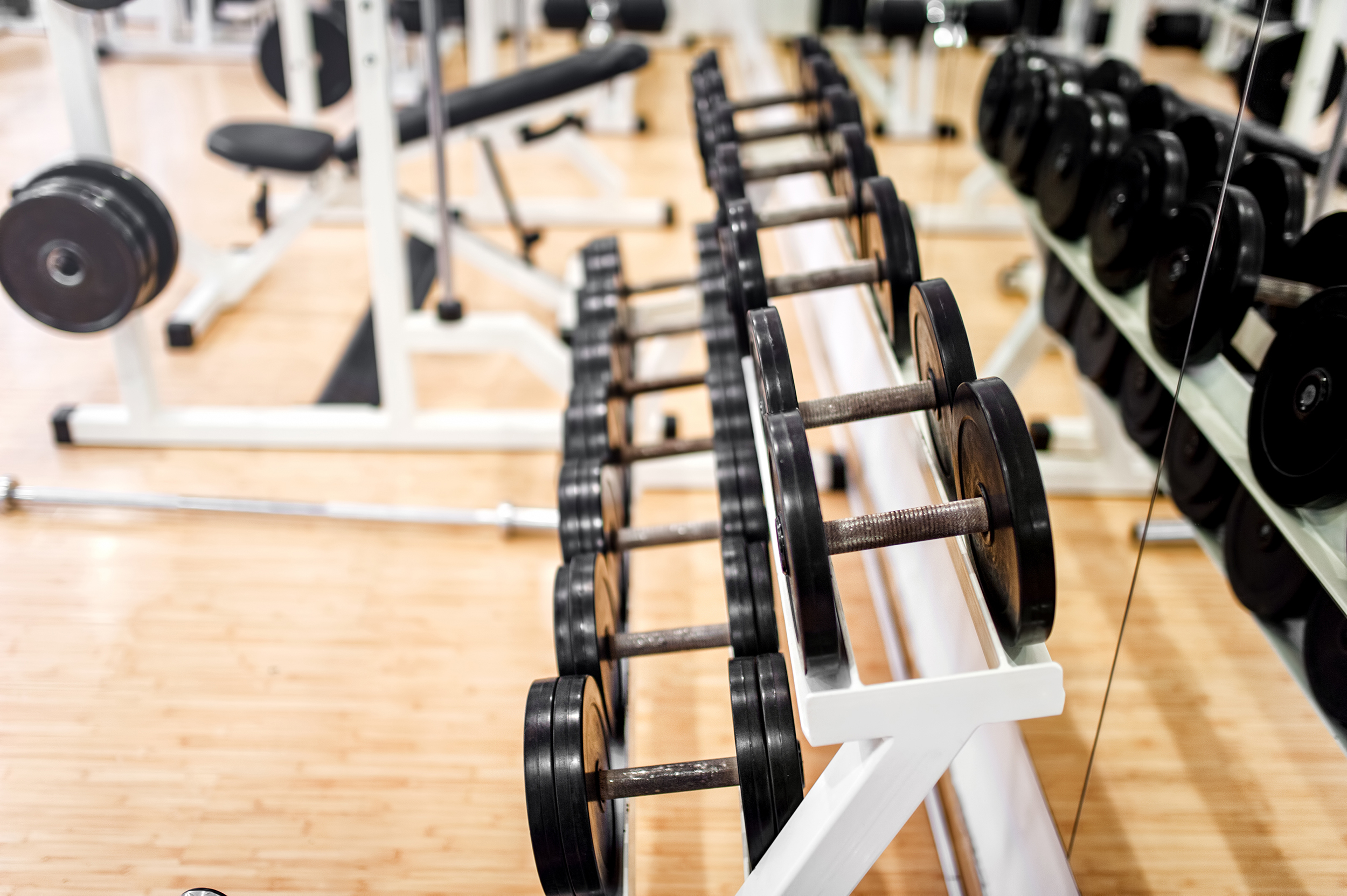 designing an effective training program to improve physiological capacity of an athlete Designing and implementing training programs summary 522  training program to improve performance, taking into  and skills assessment are required to help plan an effective training.