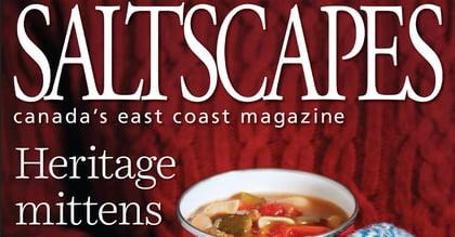 Saltscapes Blog Cover