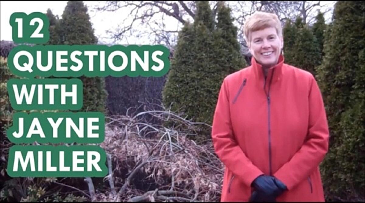 12 Questions with Jayne