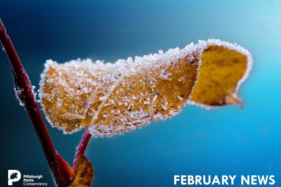 February Cover-2