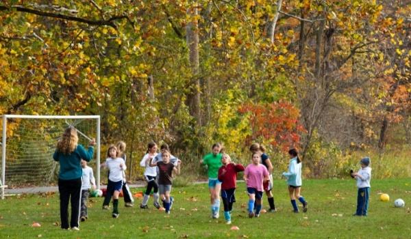 Frick Soccer Field Green Yellow fall-372420-edited