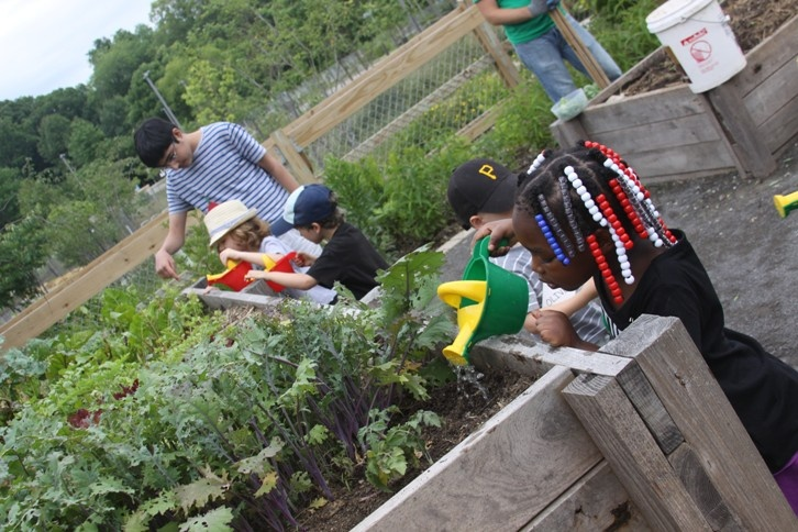 Image of kids watering a garden bed