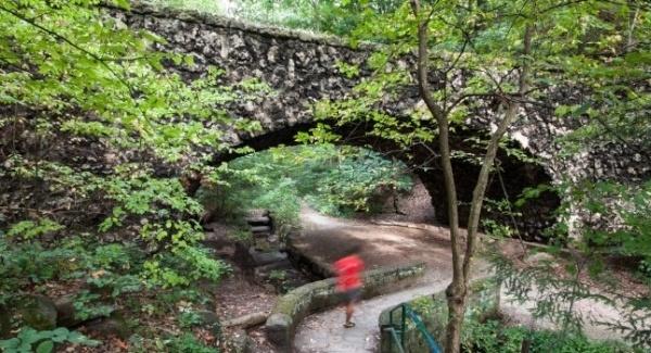 Image of Schenley Park
